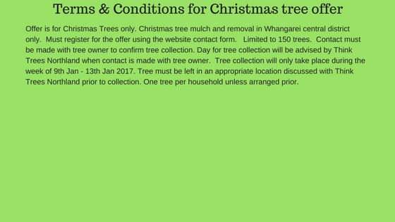 Terms-conditions-for-christmas-tree-offer-3