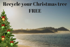 Recycle your Christmas tree - FREE